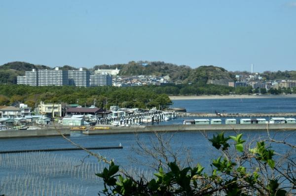2021-3-24野島山展望台 16