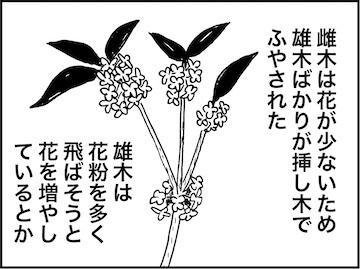kfc02262-5