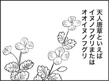 kfc02279-3