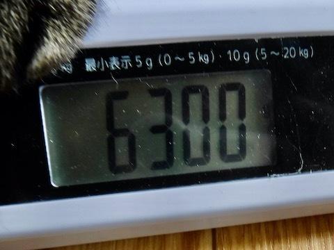 kfcp02253-7