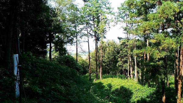寺尾茶臼山城13