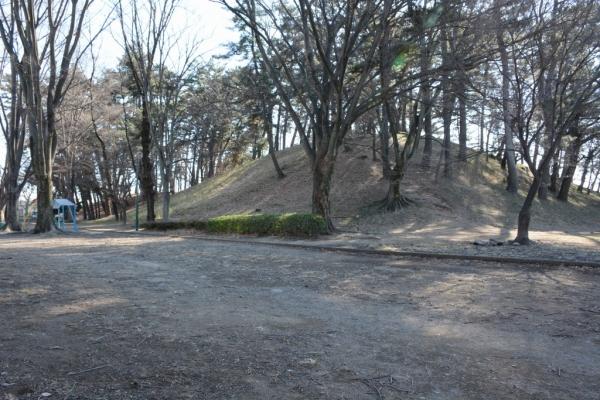 前橋八幡山古墳15