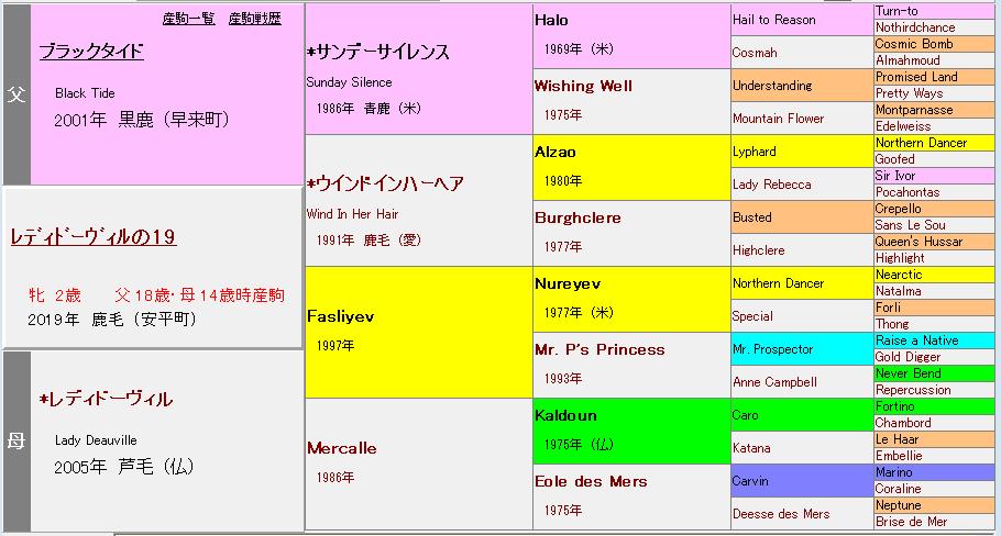 レディドーヴィル2019血統表