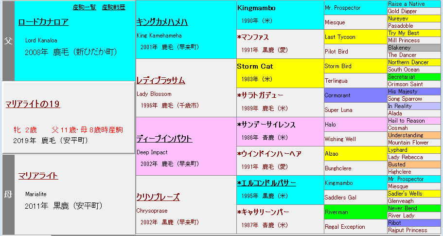 マリアライトの2019血統表