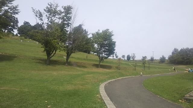 日の出公園 8