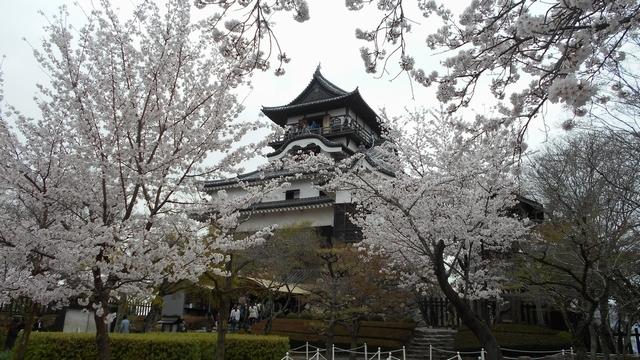 犬山城 1