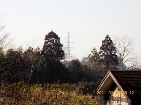 DSCN0204-2.jpg