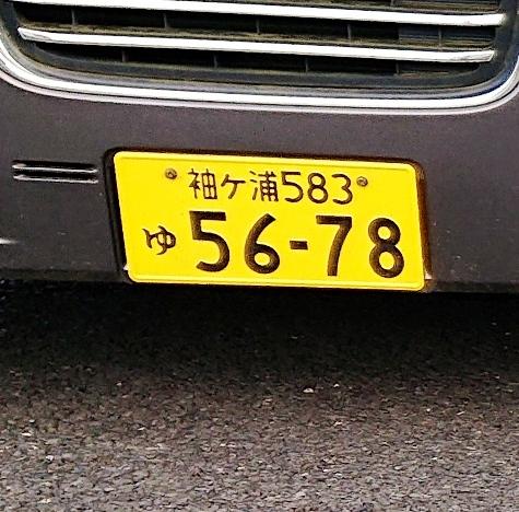 DSC_2740-5.jpg