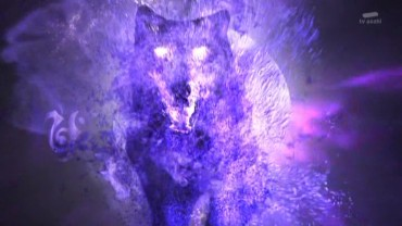 vlcsnap-2021-02-17-18h24m26s893.jpg