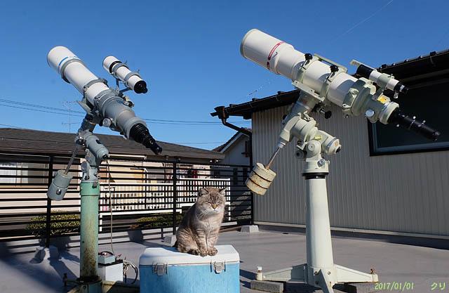 20200314_20170101チビと望遠鏡