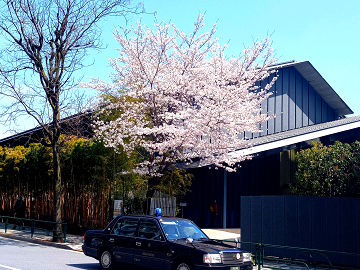 2021桜
