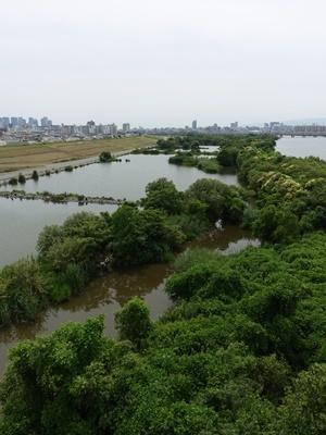 淀川ワンド2007