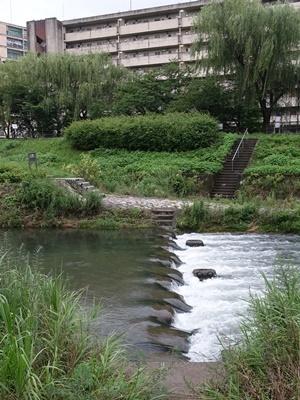 山科川増水2007