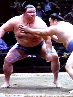 大相撲秋場所正代2009