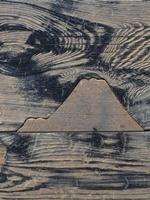 西本願寺床板埋め木2009
