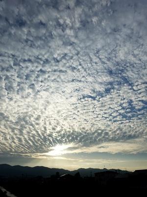 朝日とうろこ雲2010