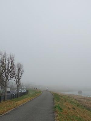 宇治川沿い霧の朝2103