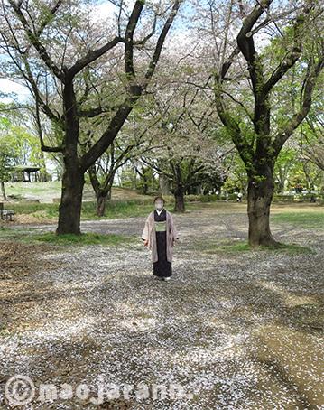 4-3八重桜単衣大島紬×読谷花織07