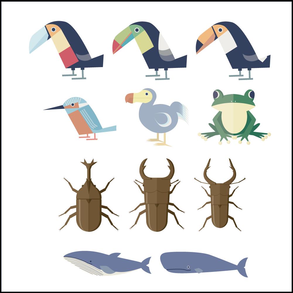 シンプルでかわいい鳥やカエルや虫やクジラのイラストanimal