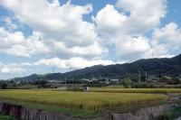 BL201001高山城~かいがけ道2-8IMG_8352