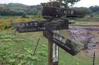 BL201023北生駒~河内森1-4IMG_8847