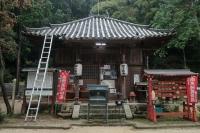 BL201013北生駒~河内森3-6IMG_8932