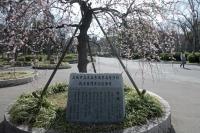 BL210225大阪城9IMG_2321