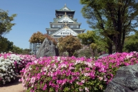 BL210420大阪城2IMG_3885