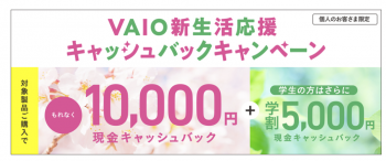 VAIO9.png