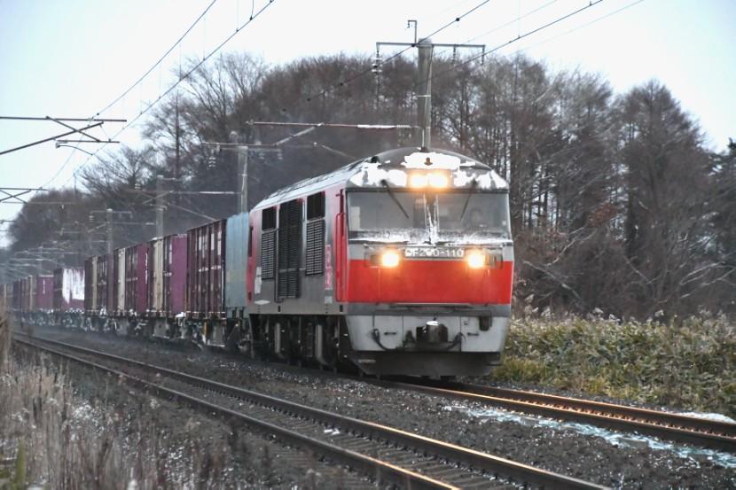 DF110DSC_4192-2.jpg