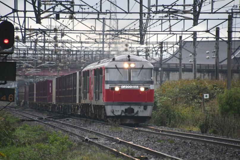 DF111DSC_1830-2.jpg