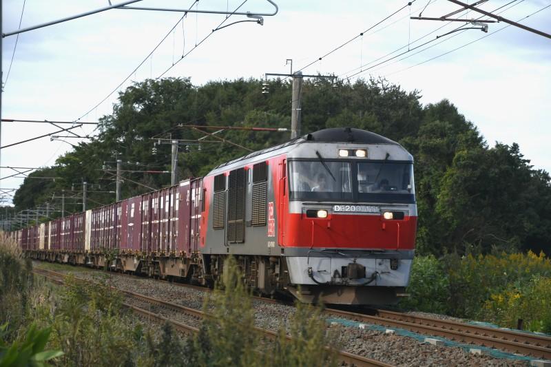 DF111DSC_2195-2.jpg