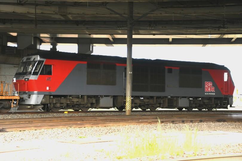 DF114DSC_9110-2.jpg