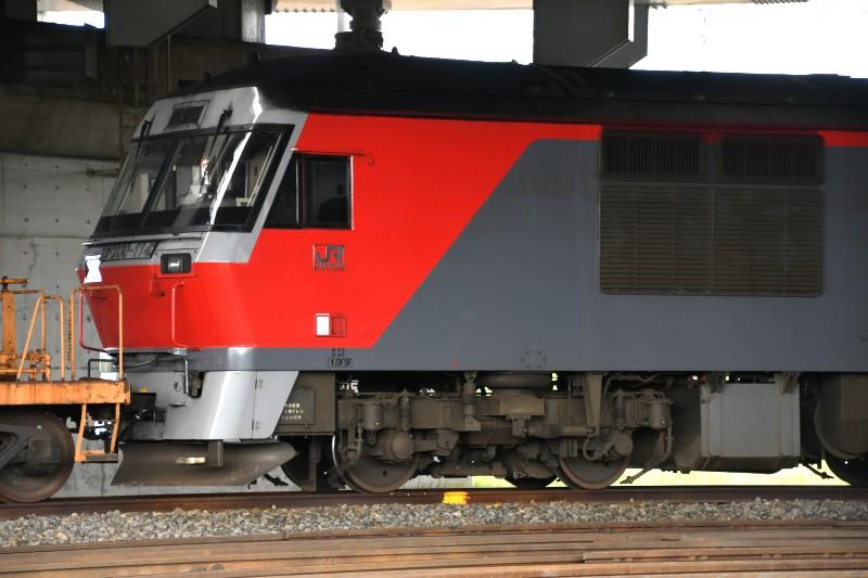 DF114DSC_9111-2.jpg