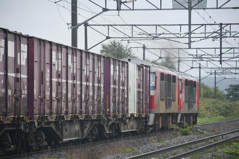 DF118DSC_1850-1.jpg