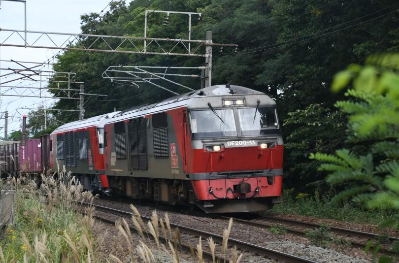 DF11DSC_1448-3.jpg