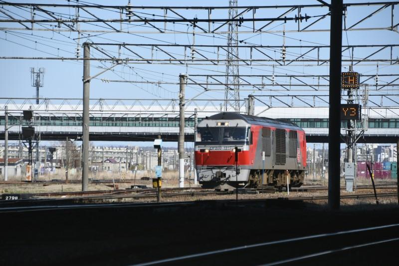 DF121DSC_7564-2.jpg