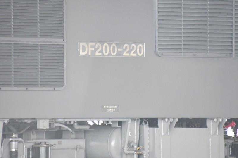 DF220DSC_6330-237.jpg
