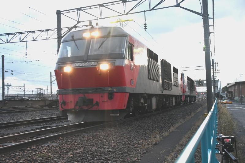 DF3DSC_3299-2.jpg