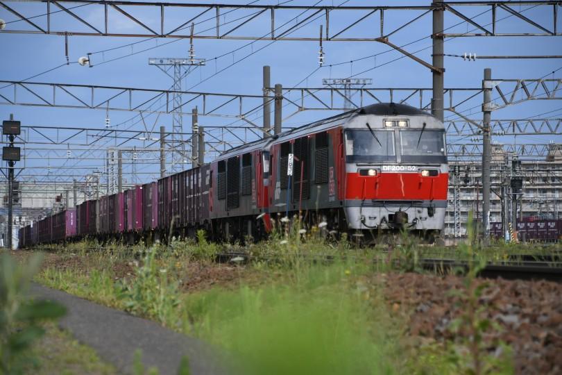 DF52DSC_0290-1.jpg
