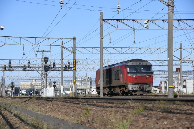 DF54DSC_2795-1.jpg