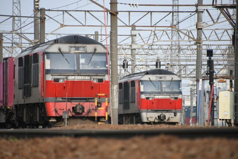 DF58DSC_7608-1.jpg