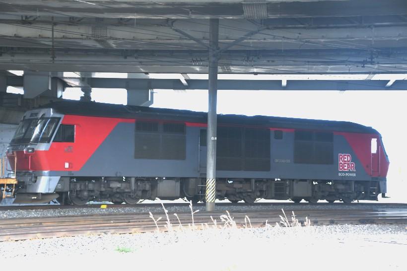 DF59DSC_0596-2.jpg