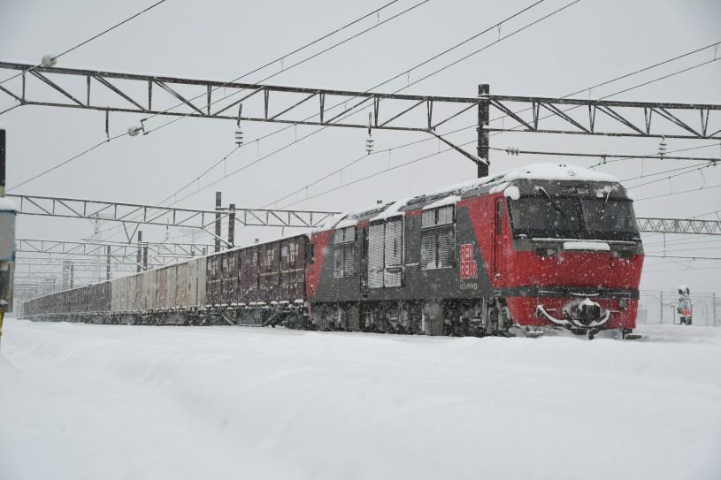 DF5DSC_4893-2.jpg
