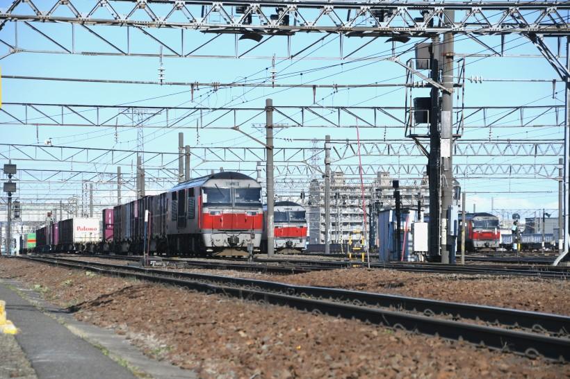 DF60DSC_7668-2.jpg