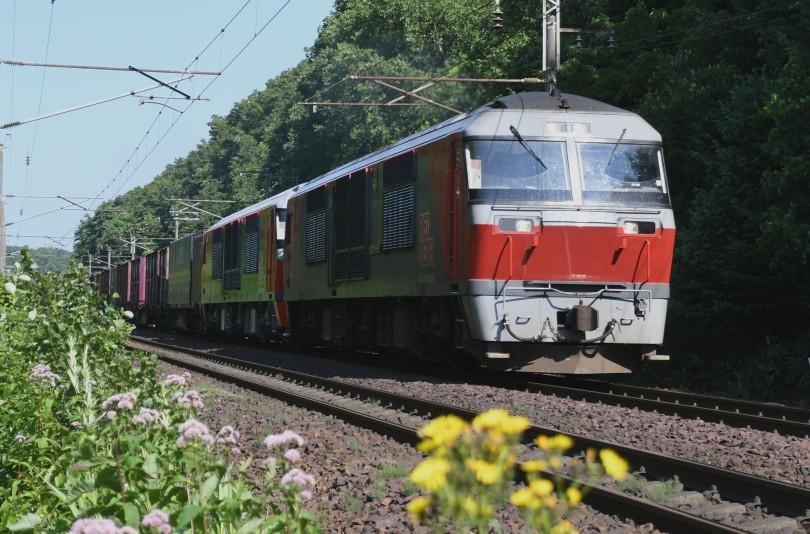 DF62DSC_9912-23.jpg