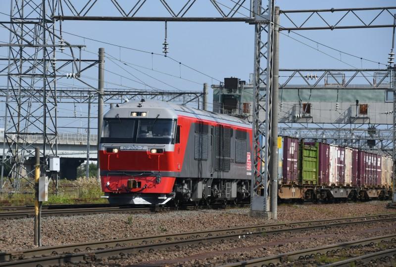 DF7DSC_1633-3.jpg