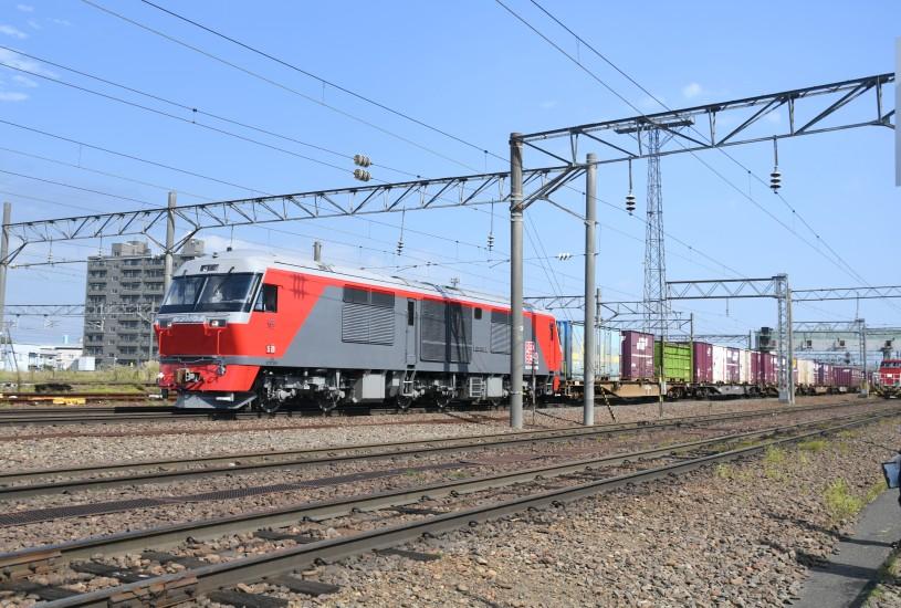 DF7DSC_1636-3.jpg