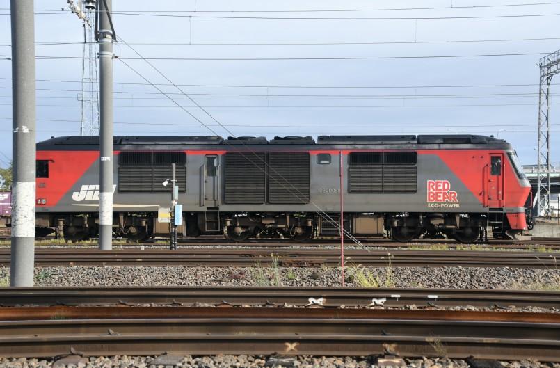 DF8DSC_2723-7.jpg