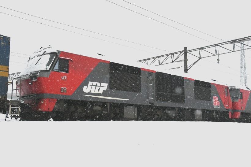 DF8DSC_5203-2.jpg